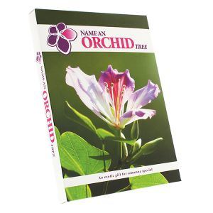 Name an Orchid Box
